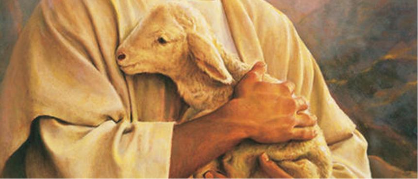 2021年08月29日主日证道:我们都如羊走迷